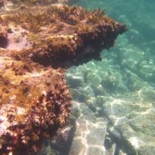 Summercloud Bay